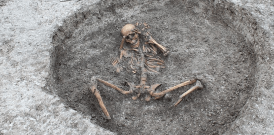 A view of one skeleton found in Oxfordshire (Image: Thames Water)
