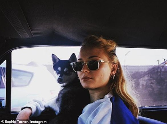 Their baby: Sophie and Joe's puppy