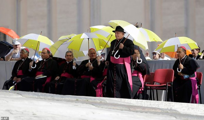 Bishops shelter from the sun as they wait for the start of Pope Francis' weekly audience at the Vatican on Wednesday