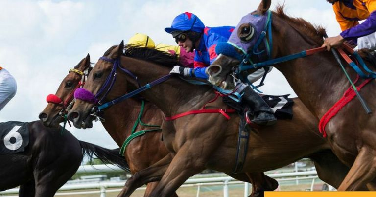 ADVERTORIAL: Get a free £5 Betfair Exchange bet – plus Saturday horse racing tips for Ascot