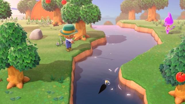 Animal Crossing: New Horizons fishing