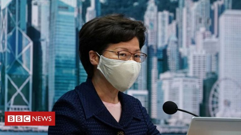 Hong Kong postpones elections for a year 'over virus concerns'