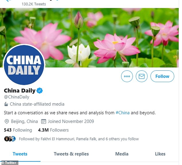 The label appears in a faint gray text directly under the account's handle and describes what the account is, such as 'China state-affiliated media' or 'US government account' for example