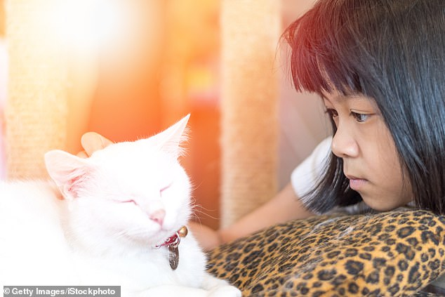 Researchers in France found that cats were more likely to glance at humans and look away than dogs, who exhibited sustained gazes. That may make felines more suitable pets for children on the autistic spectrum, who can feel stressed by sustained eye contact