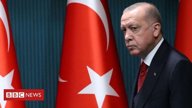 Turkey's Erdogan urges boycott of French goods