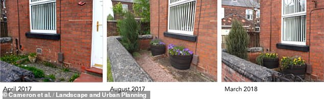 Residents were each given one tree, one shrub, one climber and enough smaller plants, bulbs and bedding plants to fill two containers (middle and left) to add to their bare gardens (right)