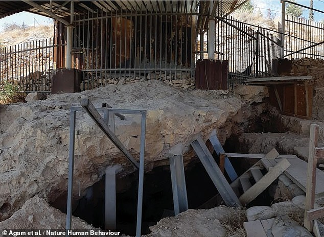 Exposing the flints to specific intensities of fire would have improved blade production, the team explained. Pictured, theQesem cave which lies to the east of Tel Aviv