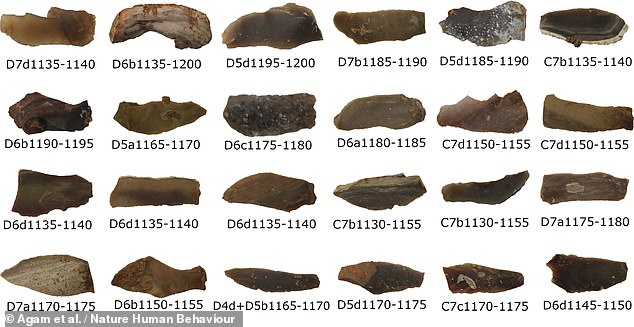 Researchers from Israel studied stone blades (pictured), flakes and pot-lids from the Qesem cave — and discovered evidence that they had been exposed to controlled fires