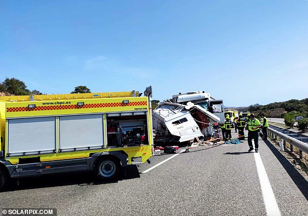 Reports at the time said the campervan was being driven on the wrong side of the motorway when the head-on smash happened (aftermath pictured)