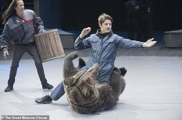 The world famous Great Moscow State Circus uses three bears, like the one seen above with one of the performers, in its shows. Performing bears have a long history in Europe and elsewhere, however performances featuring large, dangerous animals such as bears have been banned in many countries. [File photo]
