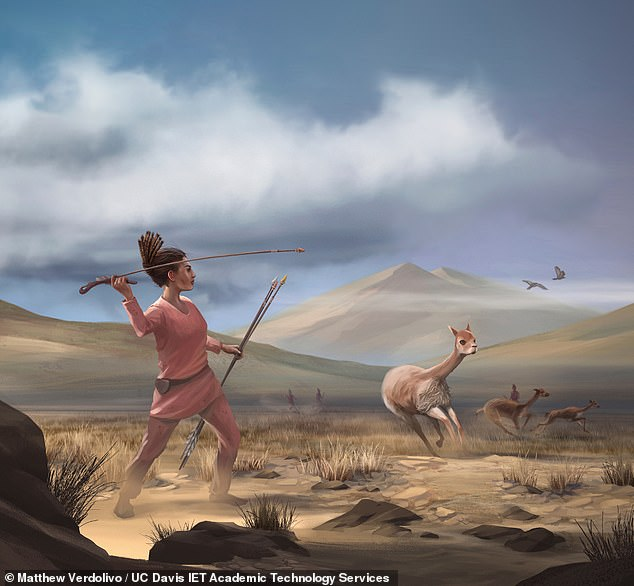 Women warriors hunted and slaughtered big game in the Andes some 9,000 years ago, as depicted, a burial site containing projectile points and butchery tools has revealed