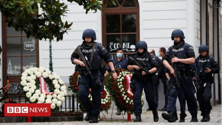Vienna shooting: Arrests after Vienna attacked by 'freed jihadist'