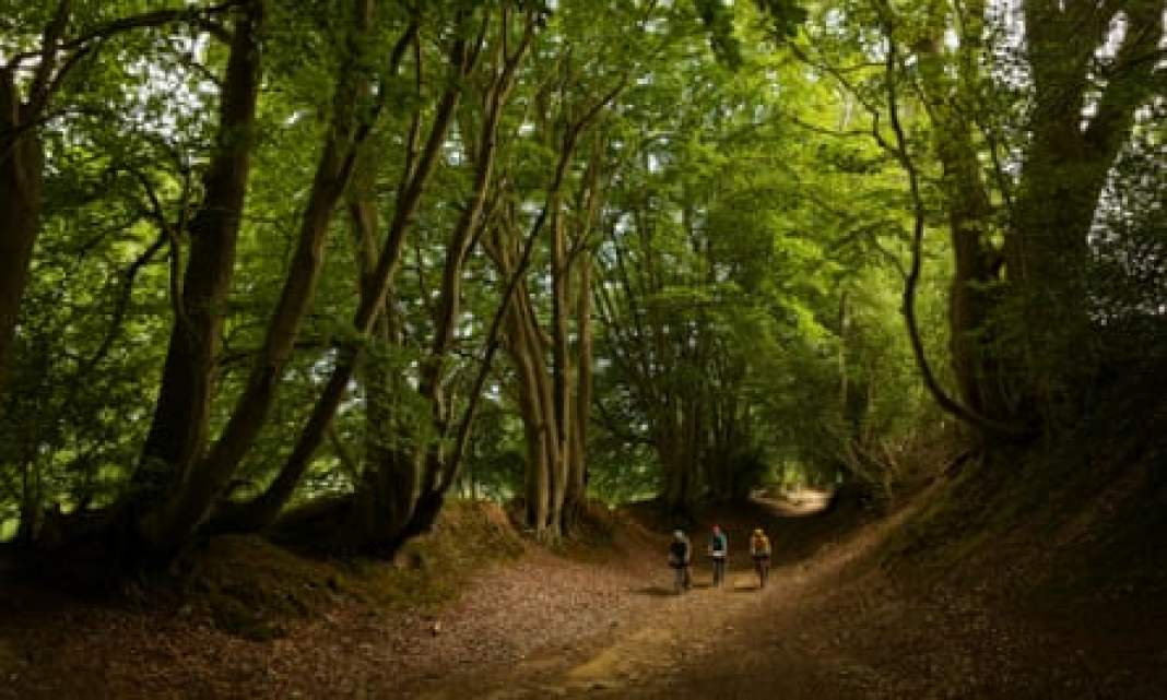 Cyclists ride through an ancient holloway close to the Devil's Punchbowl, Surrey.