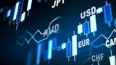 Forex Markets: Trading Brokers and World Currencies
