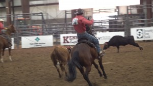 Ranch Rodeo 11