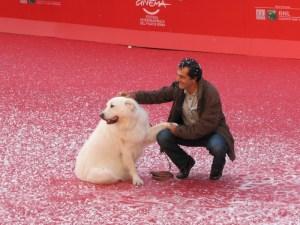 belle-sebastien-nicolas-vanier-al-festival-di-roma-2013-sul-red-carpet-accanto-a-un-bellissimo-pasto-291448