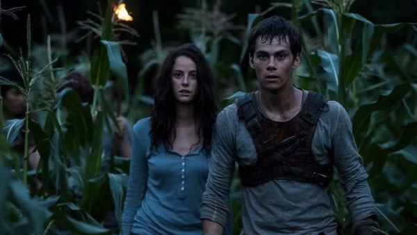 Maze Runner - il labirinto, le differenze tra libro e film