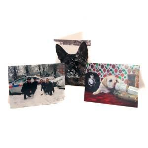 Variety Christmas Cards