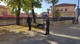 Isernia: Prevenzione, vigilanza e controllo  del territorio da parte dei Carabinieri del Comando Provinciale di Isernia.