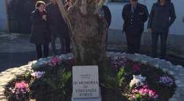 Pozzilli: inaugurato un piccolo spazio verde all'esterno del cimitero dedicato alla memoria di Vincenzo Forte.