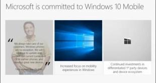 Microsoft: lo sviluppo di W10M continua, ma si annuncia l'abbandono temporaneo del mercato smartphone