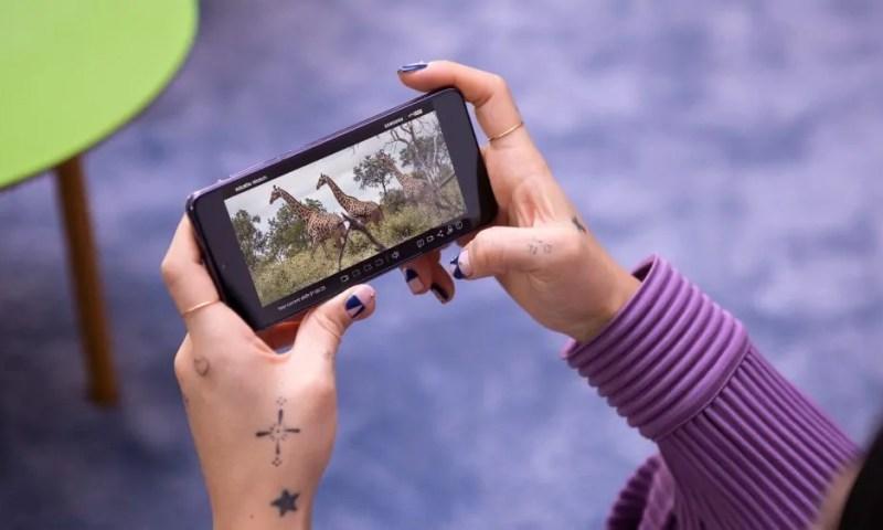 Samsung per la salvaguardia degi animali: lanciato il progetto Wildlife Watch