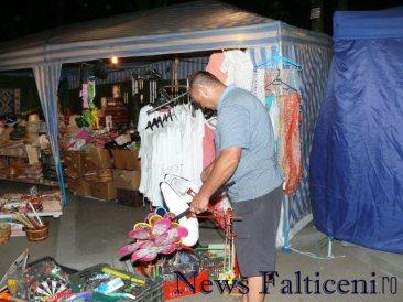 Falticeni-P1660237