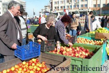 Falticeni-comert cu fructe 12