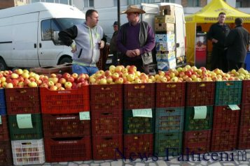 Falticeni-comert cu fructe 2