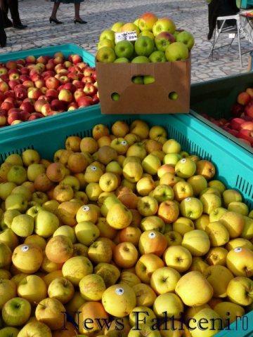 Falticeni-comert cu fructe 4