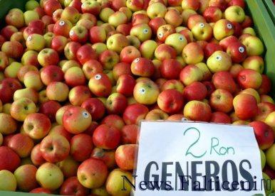 Falticeni-comert cu fructe 8