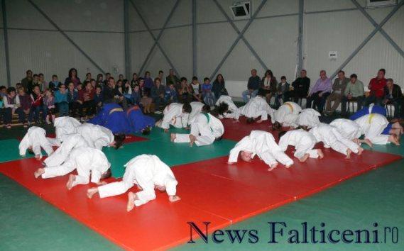 Falticeni-demonstratii judo 1