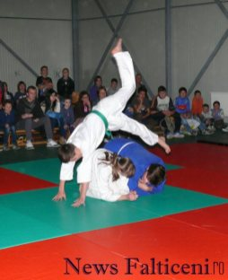 Falticeni-demonstratii judo 3