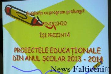 Falticeni-proiectele educationale 1