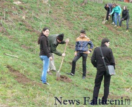 Falticeni-Campanie plantare 6