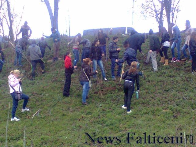Falticeni-Fotografie1261