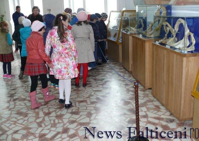 Falticeni-expo 14