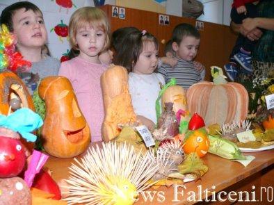Falticeni-Talente la ornamente 10