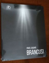 Pavel-Susara-Brancusi