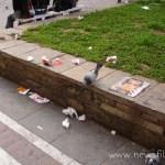 Βρώμικη πόλη: η πηγή του προβλήματος