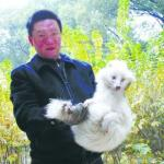 Κατοικίδιος σκύλος αποδείχθηκε σπάνια αλεπού