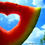 Summer love…