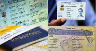 How to Apply for a Kenyan Visa | Kenya Visa Requirements For Nigerian Citizens