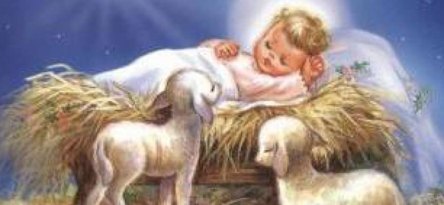 Risultati immagini per gesù bambino