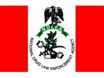 Brazil-Based Nigerian Held With 100 Wraps Of Cocaine In Private Part, Ors