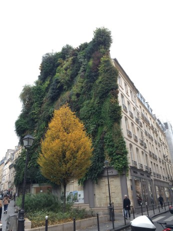 Green buildings in the 2eme