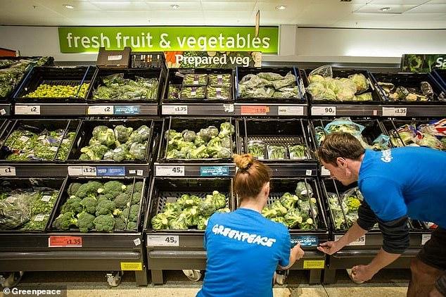 Greenpeace Shames Sainsburys And Tesco For Failing To Cut