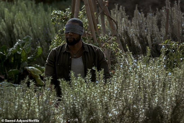The Netflix film Bird Box is set in a post-apocalyptic America where something is compelling people to kill themselves [File photo]