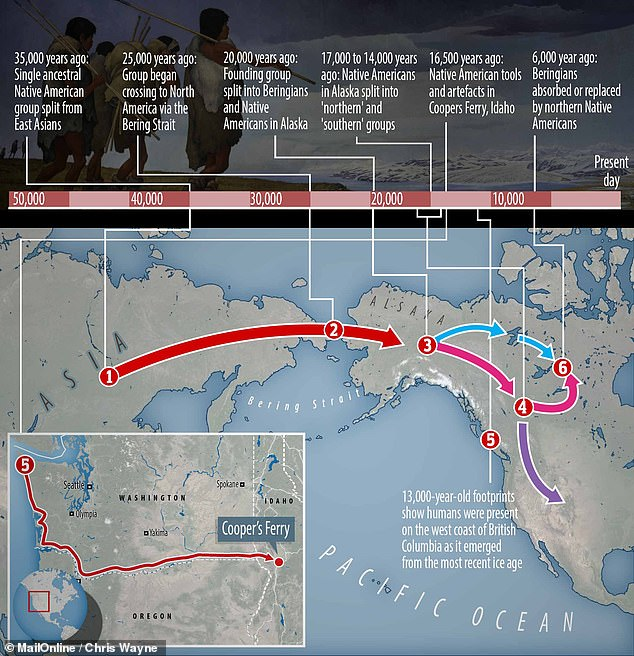 The first Americans arrived in the present day United States more than a thousand years earlier than previous thought, according to a new study. This map depicts a possible Pacific coastal migration route for early Americans.