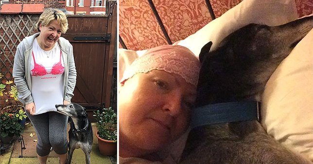amanda and Jimmy the greyhound who found her breast cancer